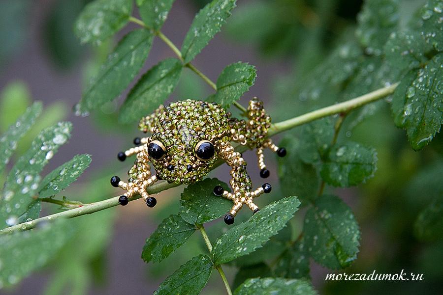 Beading frog